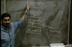 Linguaggio Java - Stanford